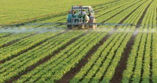 کارنامه و رتبه قبولی رشته مهندسی کشاورزی دانشگاه آزاد 95 – 96