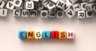 کارنامه و آخرین رتبه قبولی رشته زبان و ادبیات انگلیسی دانشگاه سراسری 95 - 96