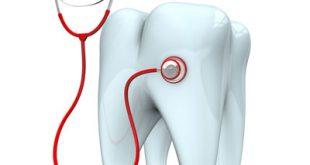 کارنامه و رتبه قبولی رشته دندانپزشکی دانشگاه دولتی لرستان 95 – 96