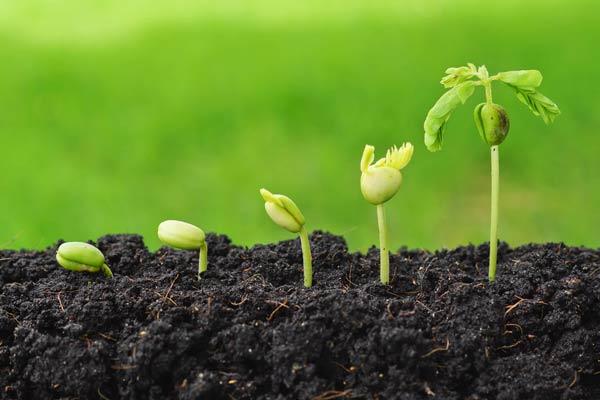 معرفی منابع کنکور ارشد رشته مهندسی مکانیزاسیون کشاورزی 1400