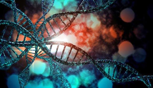 معرفی منابع کنکور ارشد ژنتیک 1400