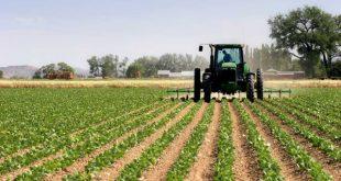ظرفیت پذیرش و انتخاب رشته دکتری اقتصاد کشاورزی سراسری و دانشگاه آزاد 97