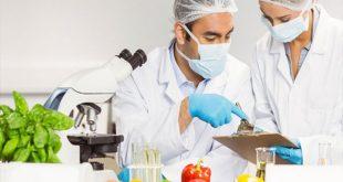ظرفیت پذیرش و انتخاب رشته دکتری علوم و مهندسی صنایع غذایی سراسری و دانشگاه آزاد 97