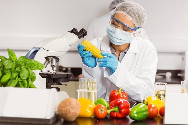 رتبه قبولی رشته علوم تغذیه دانشگاه سراسری 99 - 1400