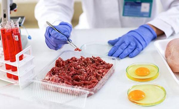 دفترچه سوالات و پاسخنامه کنکور کارشناسی ارشد رشته بهداشت و کنترل کیفی مواد غذایی