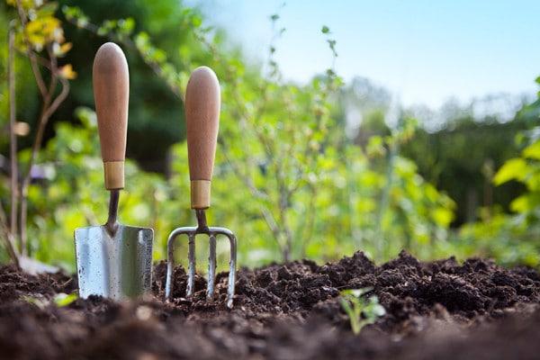 دفترچه سوالات و پاسخنامه کنکور کارشناسی ارشد رشته علوم و مهندسی باغبانی 98