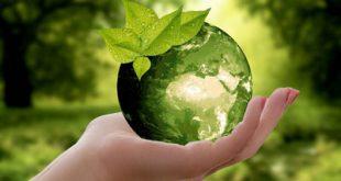 آخرین رتبه و تراز قبولی رشته مهندسی بهداشت محیط دانشگاه آزاد