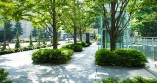 آخرین رتبه و تراز قبولی رشته مهندسی فضای سبز دانشگاه آزاد