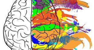کارت ورود به جلسه آزمون عملی کنکور هنر 97