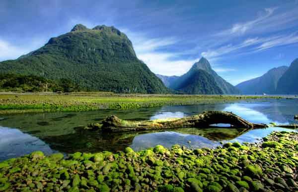 بهترین منابع آزمون دکتری رشته مهندسی محیط زیست - منابع آب 1400