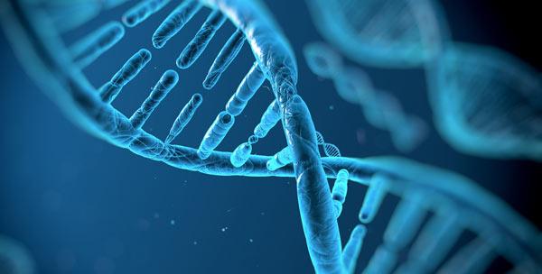 منابع آزمون دکتری ژنتیک مولکولی 1400
