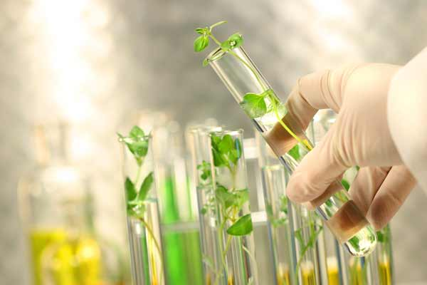 بهترین منابع آزمون دکتری رشته بیوتکنولوژی کشاورزی 1400