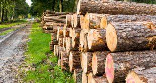 منابع آزمون دکتری رشته علوم و مهندسی عمران و بهره برداری جنگل