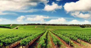منابع آزمون دکتری رشته علوم و مهندسی آب - هواشناسی کشاورزی