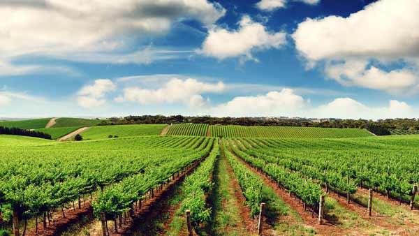 بهترین منابع آزمون دکتری رشته علوم و مهندسی آب - هواشناسی کشاورزی 1400