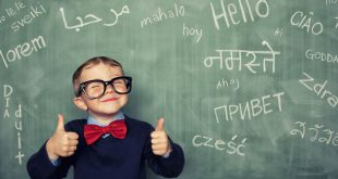 دفترچه ثبت نام آزمون مدارس تیزهوشان ششم ابتدایی