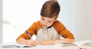 دفترچه ثبت نام و ظرفیت آزمون نمونه دولتی