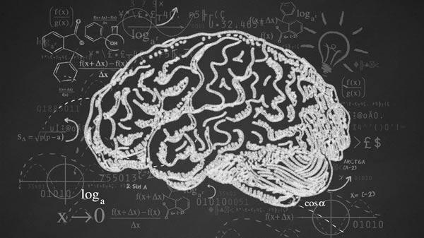 کارنامه و رتبه قبولی علوم شناختی - علوم اعصاب شناختی دکتری سراسری 97 - 98