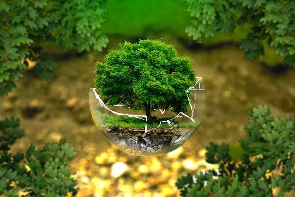 کارنامه و رتبه قبولی مهندسی محیط زیست دکتری دانشگاه سراسری 99 - 1400