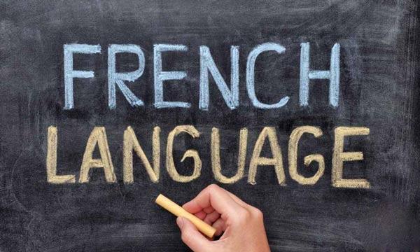 کارنامه و رتبه قبولی آموزش زبان فرانسه دکتری سراسری 98 - 99