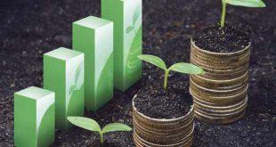 آخرین رتبه قبولی اقتصاد کشاورزی دانشگاه آزاد