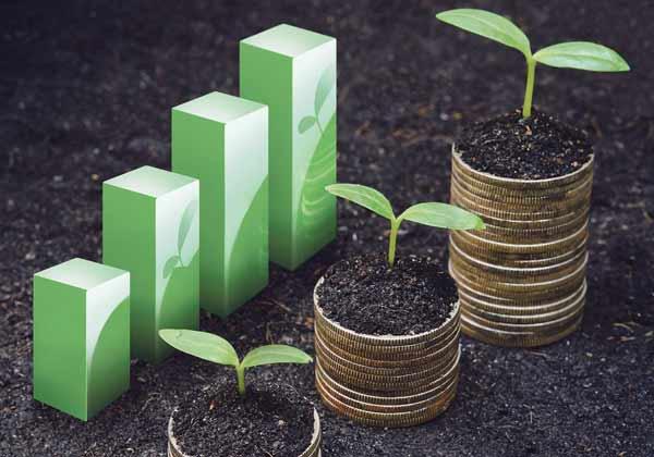 کارنامه و رتبه قبولی اقتصاد کشاورزی آزاد 98 - 99