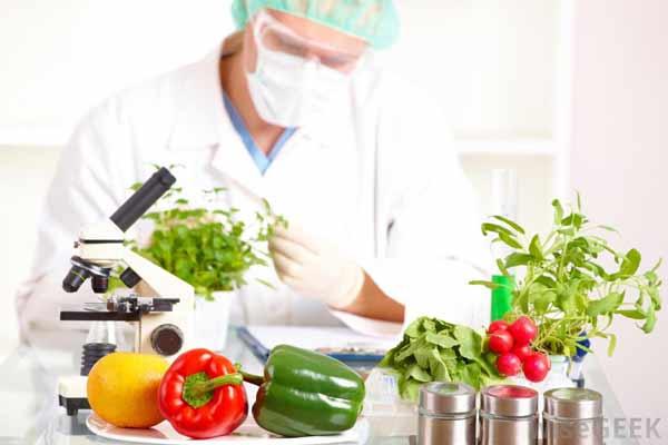 کارنامه و رتبه قبولی علوم تغذیه آزاد 97 - 98