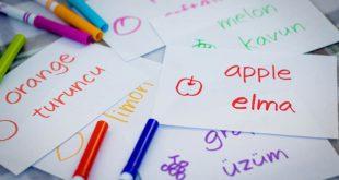 آخرین رتبه قبولی زبان و ادبیات ترکی استانبولی دانشگاه سراسری
