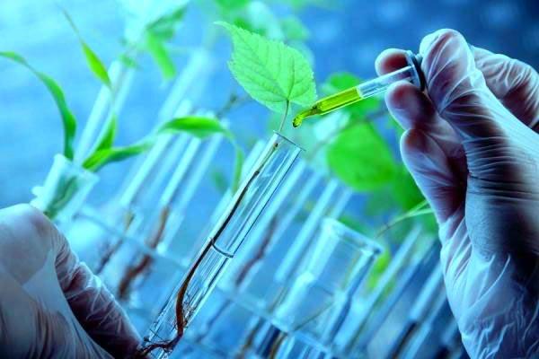 کارنامه و رتبه قبولی گیاه پزشکی 97 - 98