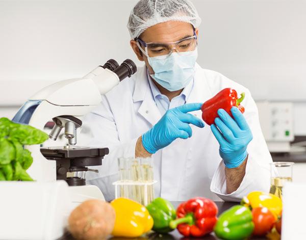کارنامه و رتبه قبولی علوم و صنایع غذایی 98 - 99