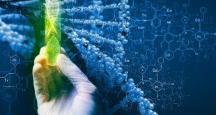 آخرین رتبه قبولی زیست فناوری دانشگاه سراسری