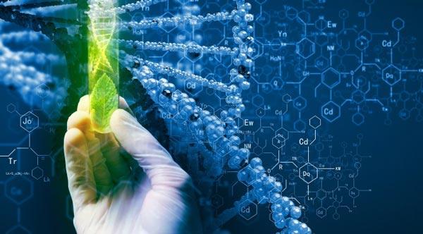 کارنامه و رتبه قبولی زیست فناوری 98 - 99