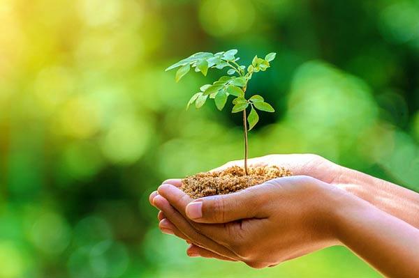 معرفی منابع کنکور ارشد مجموعه علوم محیط زیست 1400