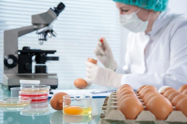 معرفی مباحث و ضرایب دروس ارشد رشته علوم و صنایع غذایی 1400