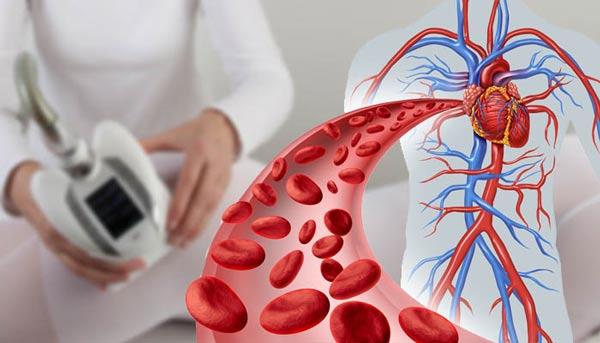 معرفی منابع ارشد رشته تکنولوژی گردش خون 1400