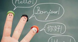 معرفی زیرگروه های کنکور زبان های خارجی
