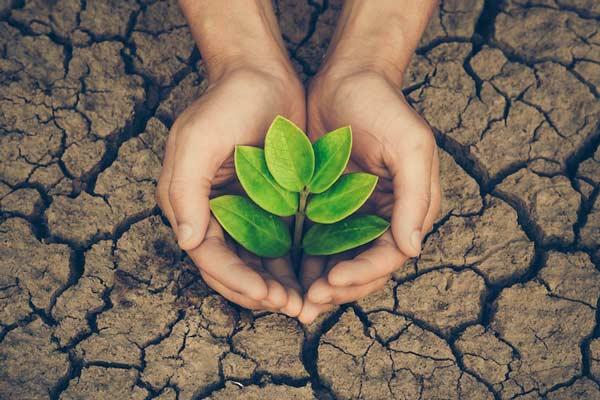 معرفی منابع آزمون ارشد رشته محیط زیست 1400