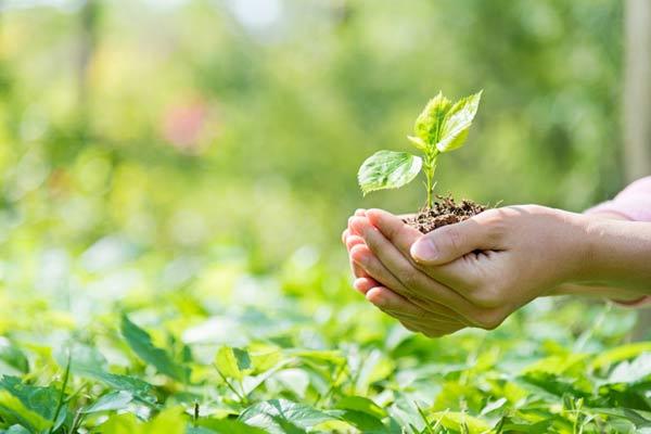 معرفی منابع آزمون ارشد مجموعه مدیریت حاصلخیزی، زیست فناوری و منابع خاک 1400