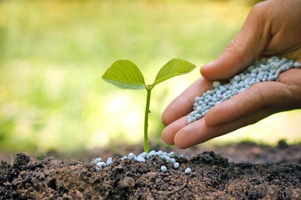 معرفی منابع آزمون ارشد رشته ترویج و آموزش کشاورزی 1400