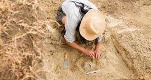 منابع کنکور کارشناسی ارشد رشته باستان سنجی