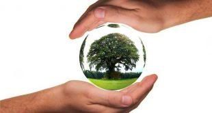 دانلود سوالات کنکور کارشناسی ارشد رشته ایمنی، بهداشت و محیط زیست
