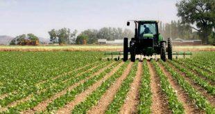 کارنامه و رتبه قبولی رشته توسعه کشاورزی مقطع دکتری دانشگاه سراسری