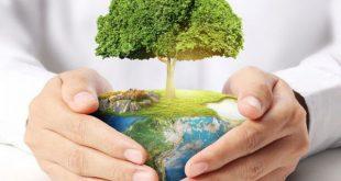 کارنامه و رتبه قبولی رشته علوم محیط زیست مقطع کارشناسی ارشد دانشگاه سراسری