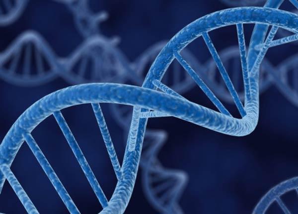 کارنامه و رتبه قبولی ژنتیک ارشد سراسری 98 - 99