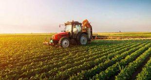 کارنامه و رتبه قبولی رشته ترویج و آموزش کشاورزی پایدار مقطع دکتری دانشگاه سراسری
