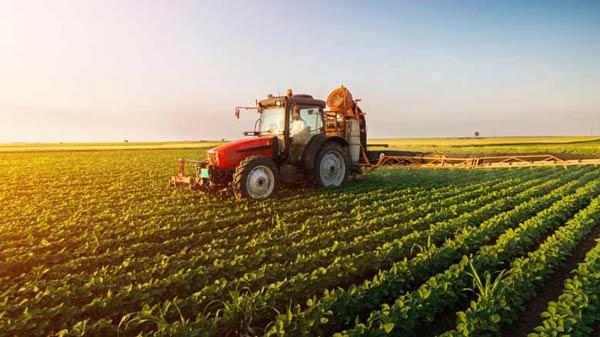 کارنامه و رتبه قبولی ترویج و آموزش کشاورزی پایدار دکتری سراسری 98 - 99
