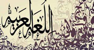 آخرین رتبه قبولی زبان و ادبیات عربی دانشگاه سراسری