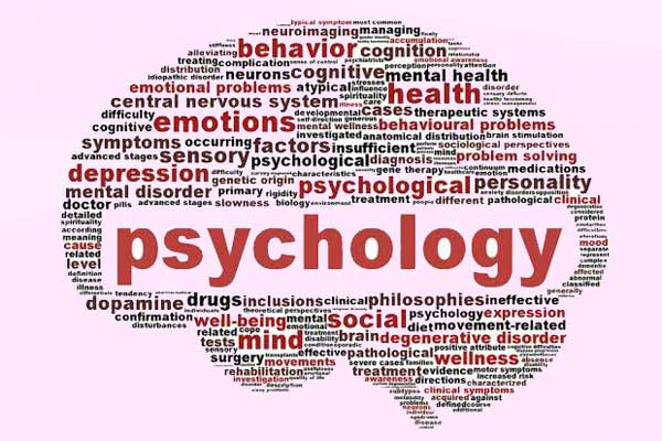 کارنامه و رتبه قبولی روانشناسی تربیتی ارشد سراسری 98 - 99