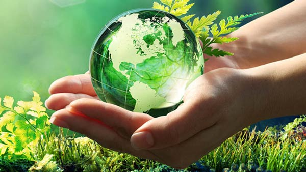 رتبه قبولی رشته محیط زیست مقطع کارشناسی ارشد دانشگاه سراسری 98 - 99