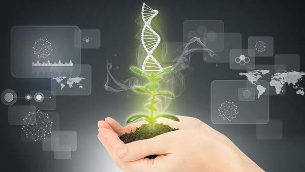 کارنامه و رتبه قبولی رشته ژنتیک و به نژادی گیاهی دکتری دانشگاه آزاد 98 - 99